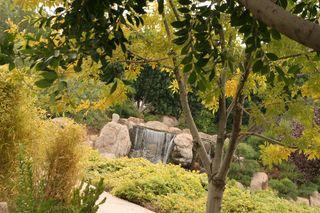 Japanese Friendship Garden 12-12-09 032