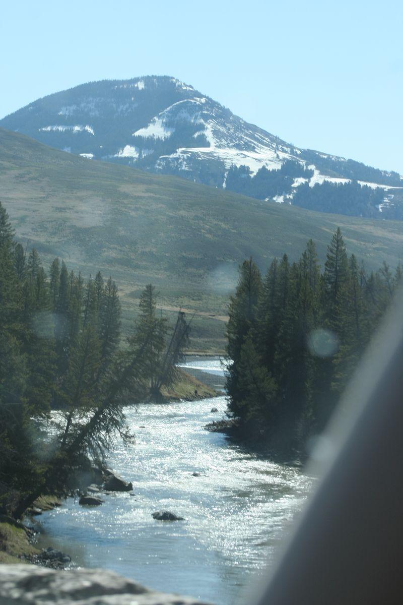 Yellowstone 5-16-10 038