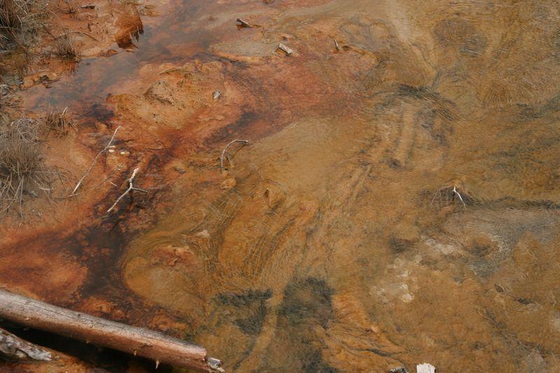 Yellowstone 5-17-10 063