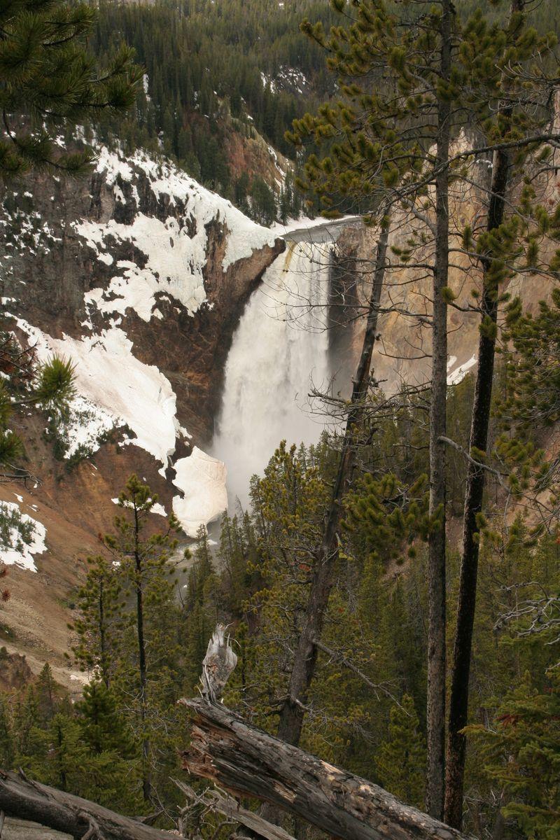 5-21-10 Leaving Yellowstone 022