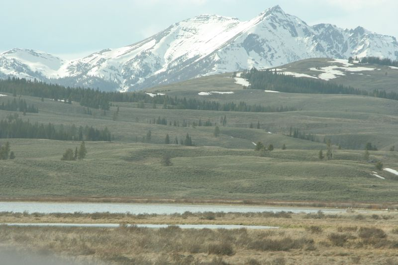 Yellowstone 5-17-10 076