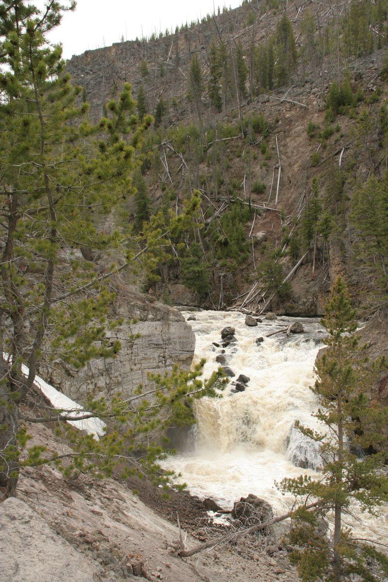 Yellowstone 5-18-10 047