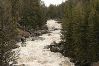 Yellowstone 5-19-10 086